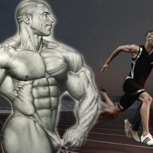 Что эффективнее, кардио или силовые тренировки?
